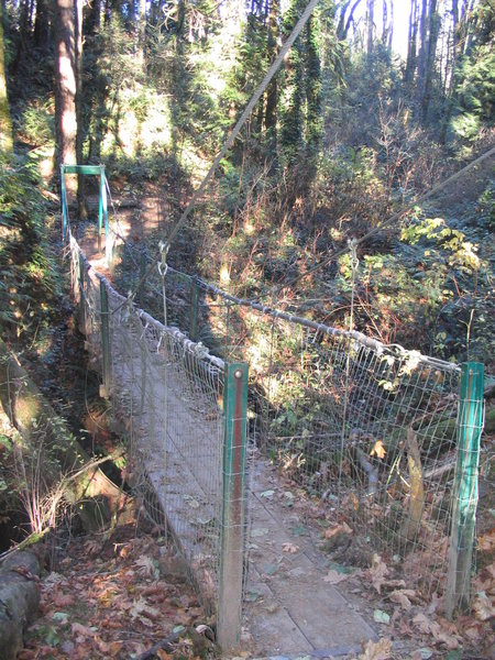 The Terry Riley suspension bridge along the Lewis and Clark Trail.