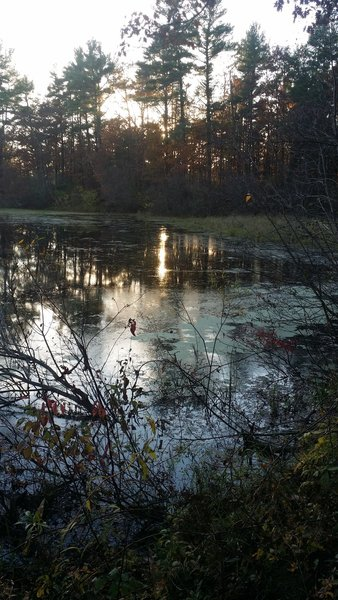 A pond on the Ice Age Trail.