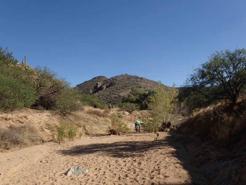 A nice desert hike down the Badger Springs Wash Trail.