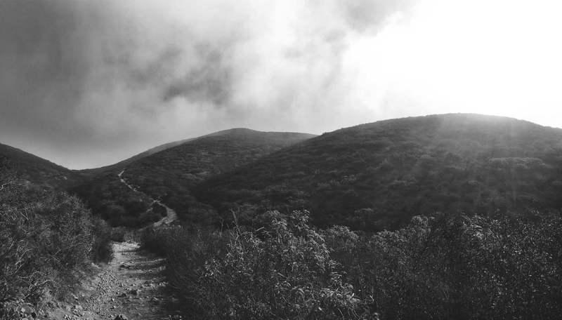 Foggy morning hike.
