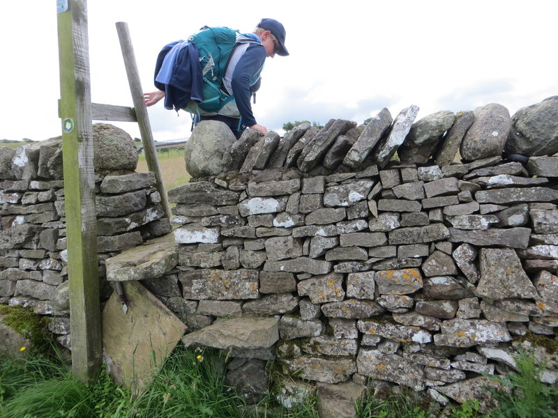 Amazing stone walls and stiles. The farmers keep them in good nick, so hikers can cross their fields properly.
