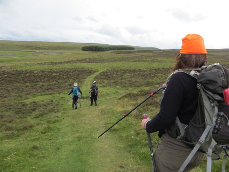 Crossing rolling hills near Orton.