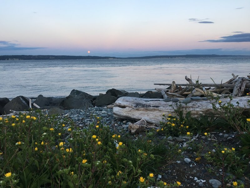 Moonrise from Fort Casey State Park.