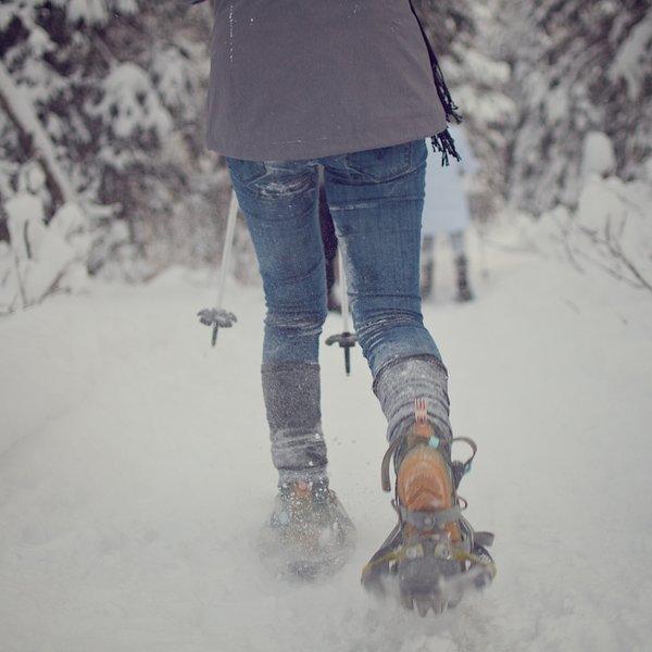 Snowshoeing along the Albert Loop.