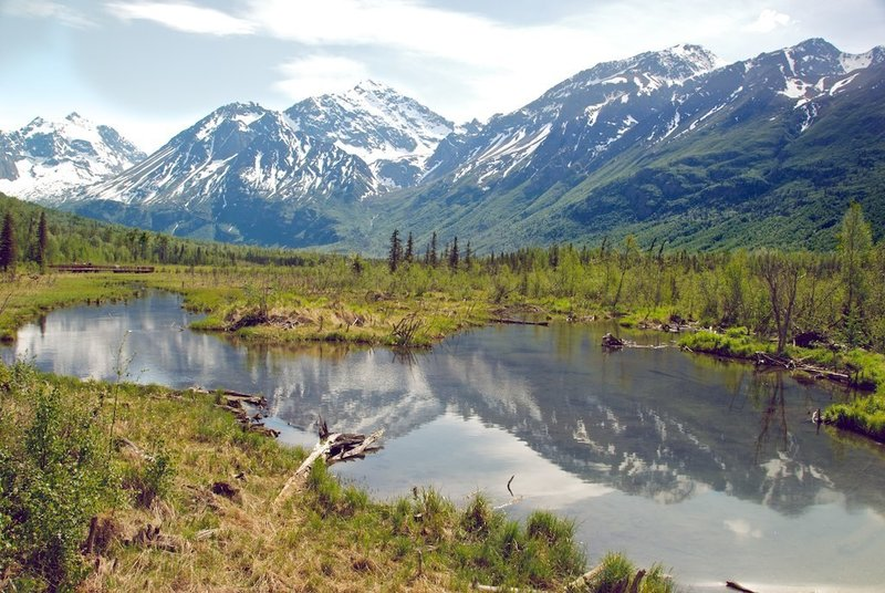 From a boardwalk along the Albert Loop in Chugach State Park.