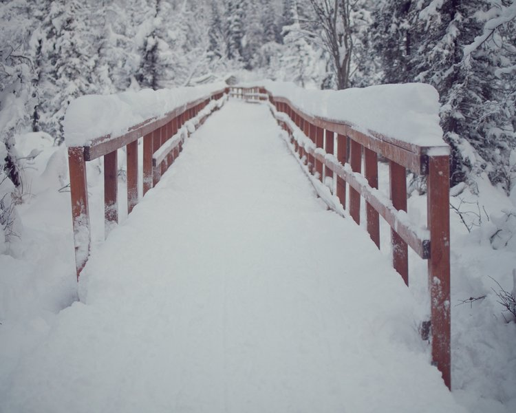 Wooden bridge crossing covered in fresh snow.