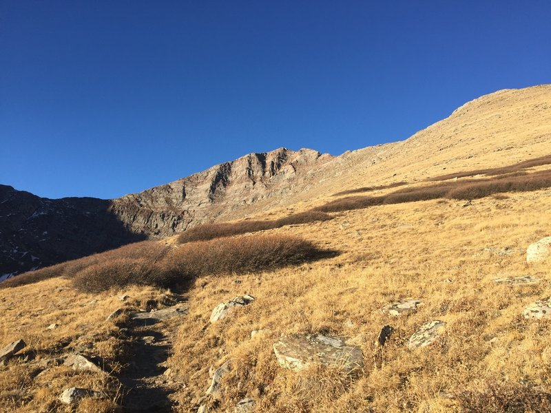 Looking up to Venable Pass and the early slopes of Venable Peak.