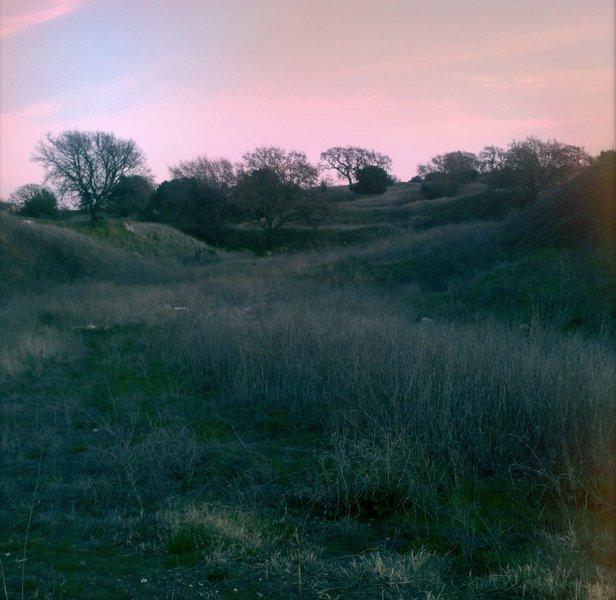 The park at dusk.