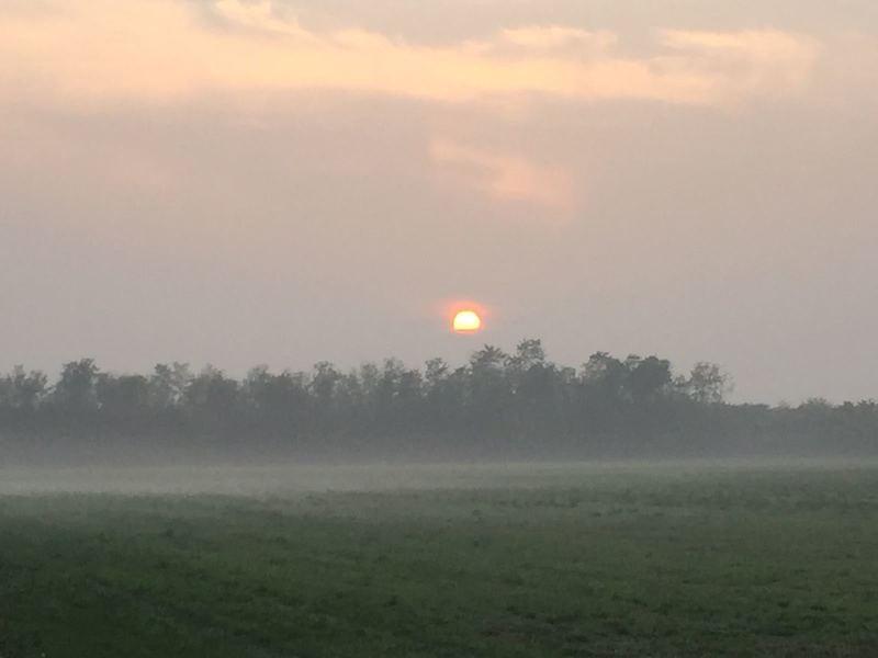 Sunrise in autumn / Alba in autunno.