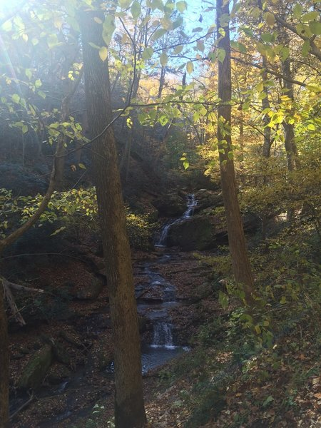 Waterfall around 1 mile of the trail!
