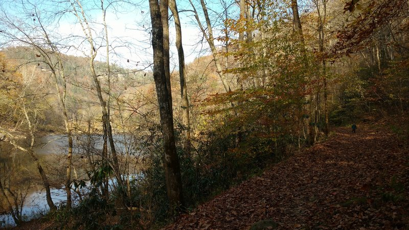 Heading back to the Leatherwood Trailhead parking lot along the Big South Fork river on the Angel Falls Trail.