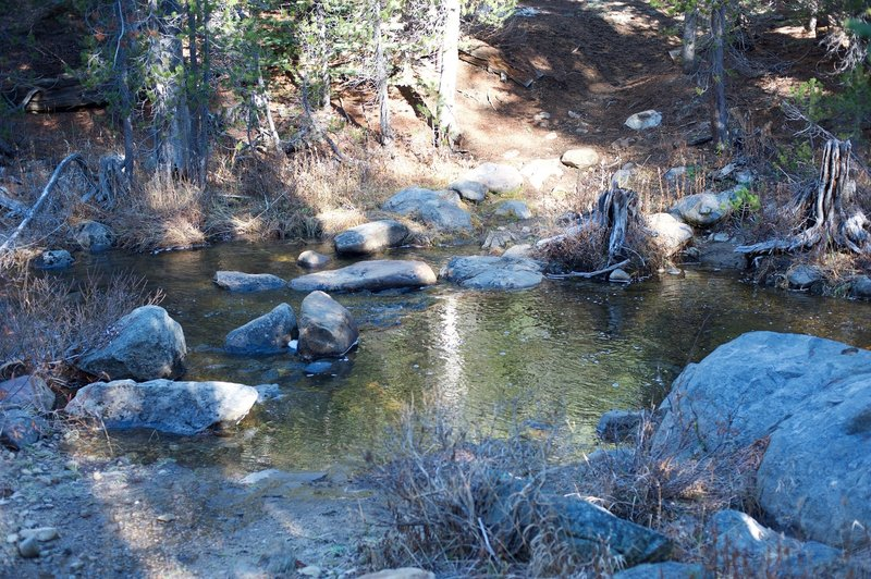 The crossing of Bridalveil Creek on the Ghost Forest Trail.