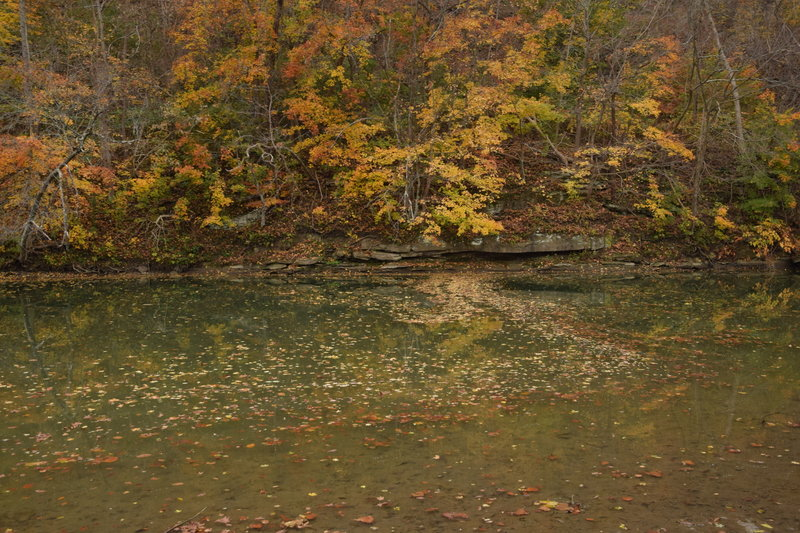 Fall at Buffalo Creek.