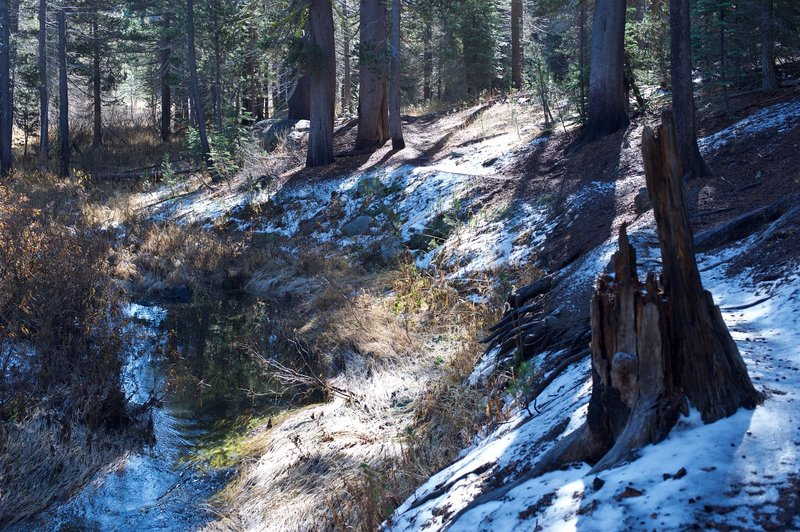 Several sections of the trail run right along Bridalveil Creek, making it a great place to experience the spring snowmelt. In the late fall, the trail can be snowy and icy.