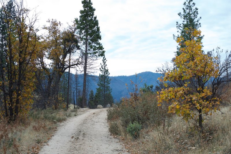 In the fall, the trees change color along the trail.