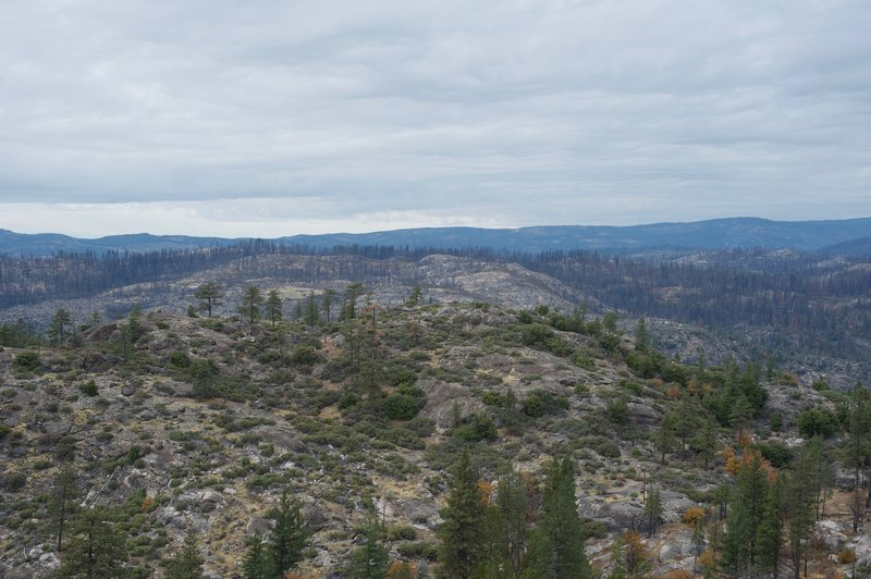 Looking at the surrounding landscape, the damage of the Rim Fire of 2013 is still evident as thousands of scorched trees stand on the hills.