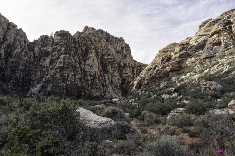 Ice Box Canyon Trail.