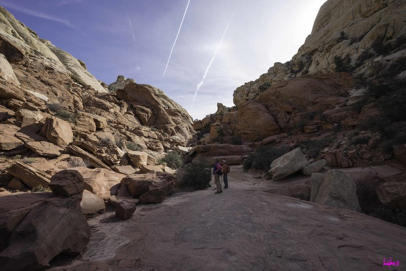 Looking up at the massive rocks surrounding the trail.