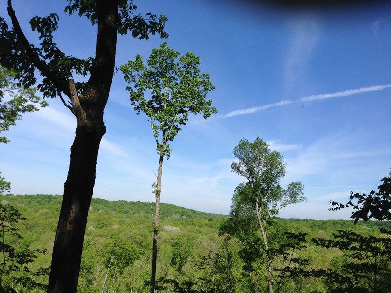Hiking to north camp in Zaleski