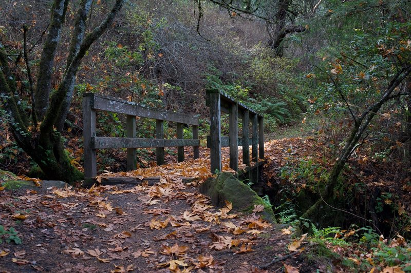 This small bridge passes over a small creek in the fall and offers views of a small waterfall on the uphill side.