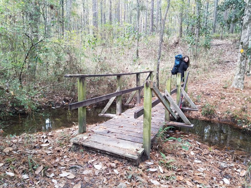 One of the trail's numerous creek crossings.