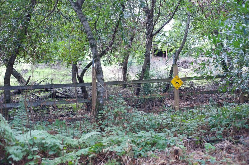 The trail swings back to the right and runs along the border of the preserve. Fences and signs indicate private property.