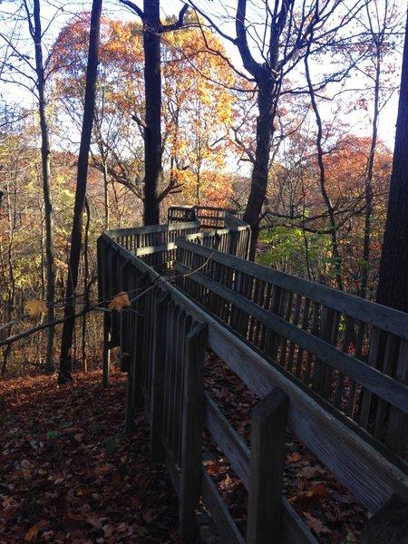 Tree top lookout bridge in fall.