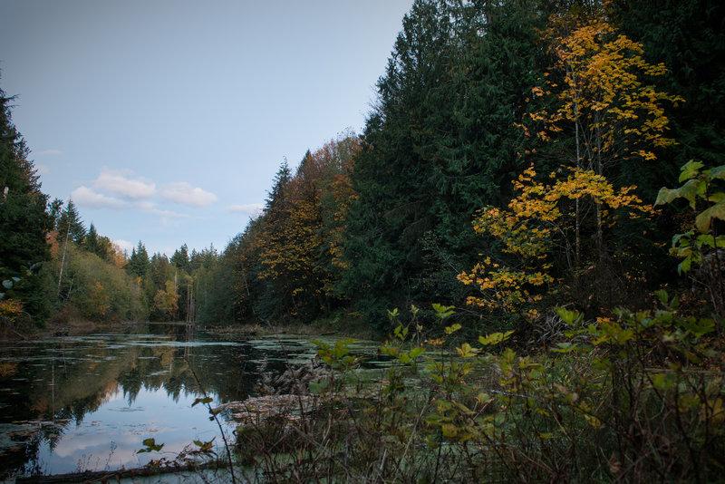 Twilight over Geneva Pond, Stimpson Family Nature Reserve.