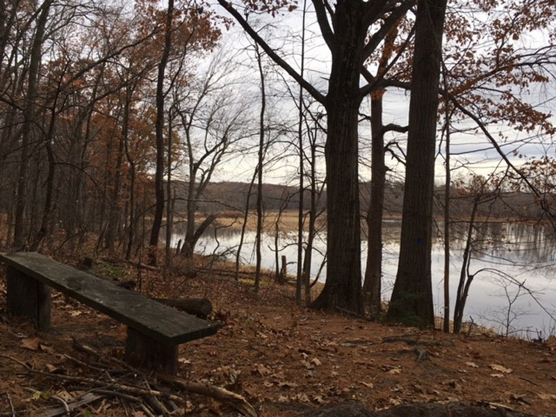 Bench overlooking Mill River and marsh.