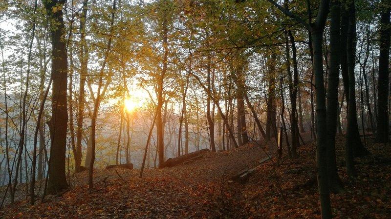 Rising sun and last glimpse of fall.