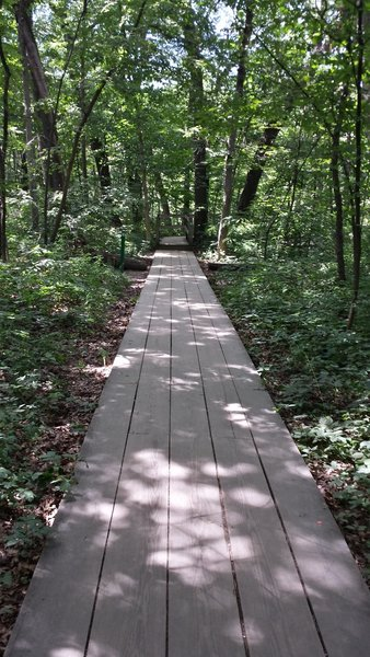 Connecting Trail - French Canyon boardwalk.