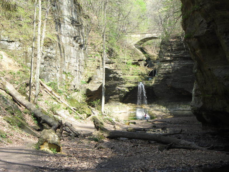 View from the lower dell at Matthiessen State Park.