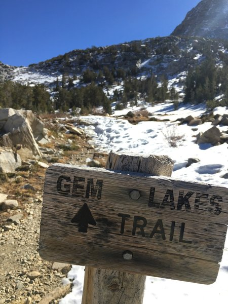 A classic wooden sign along the trail.