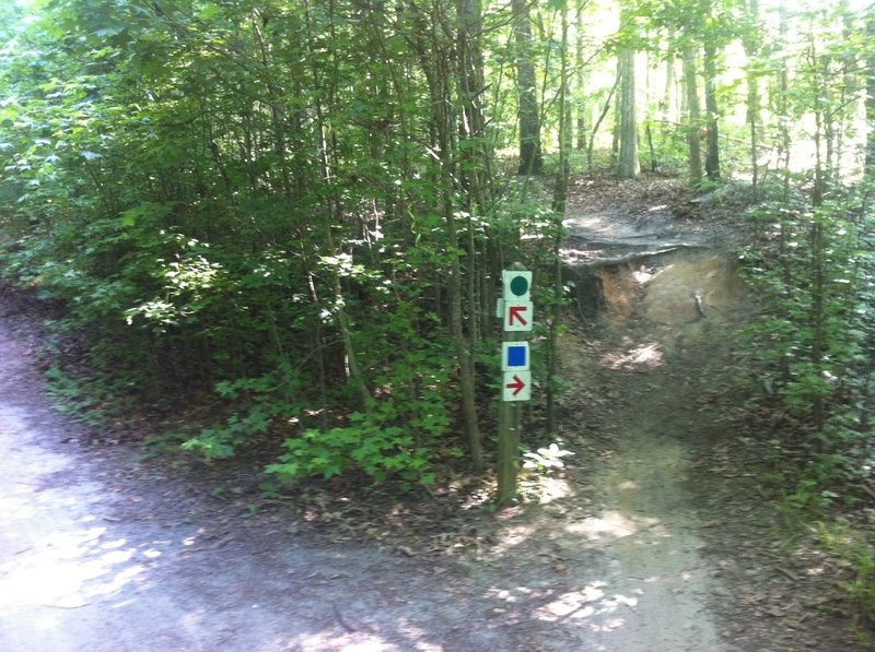 Trail signs denote branches of trail that are popular for mountain bikers. Keep an eye out for cyclists in these sections!