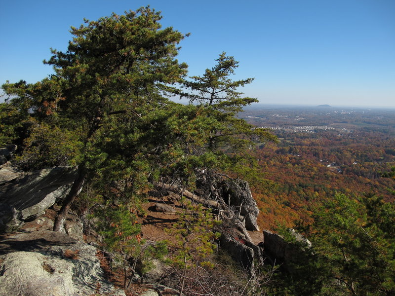 Views are lovely, even from the lower reaches of Crowder Mountain!