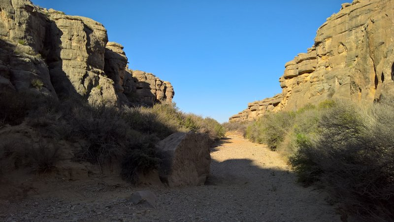 West side of mouth of Dog Canyon.