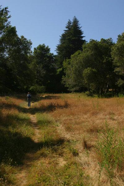 Rocky Ridge Trail.