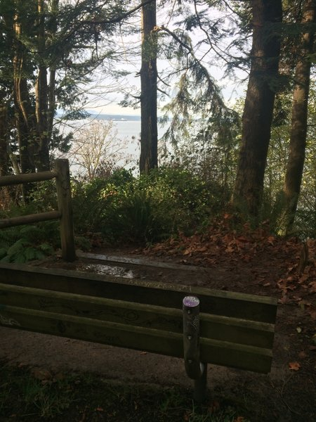 Bench with a view.