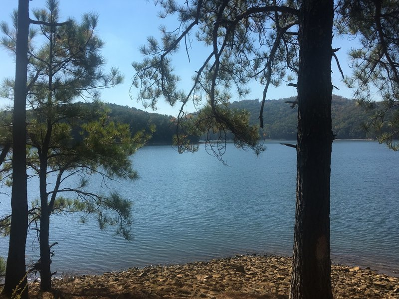 Lake Front View.