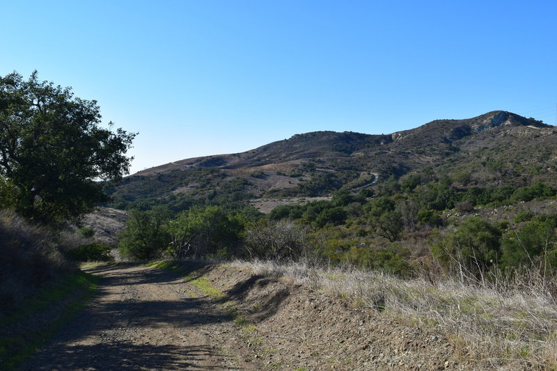 Whiting Ranch.