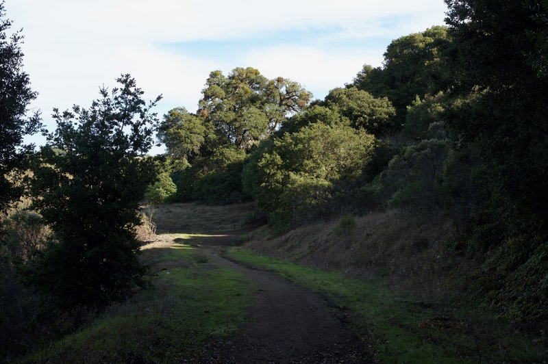 After passing through the gate, the trail hugs the ridge line and changes into a dirt track.