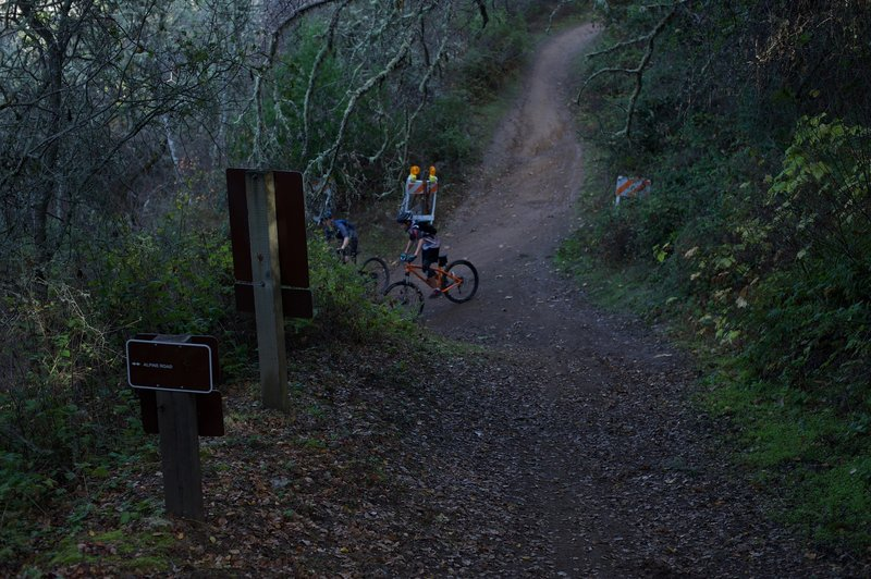 The trail comes to a junction with the Alpine Road Trail, where mountain bikers enjoy the descent from Page Mill Road to Portola Valley.