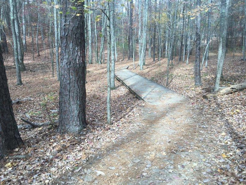 Boardwalk along the trail.