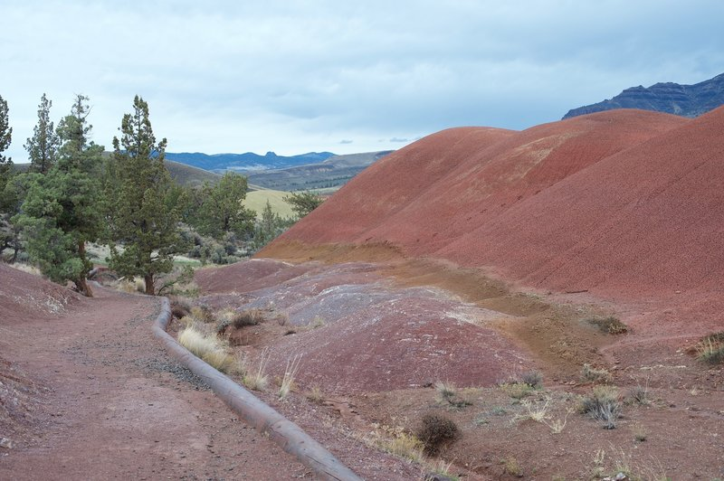 Phyolite Lava flows can be seen directly off to the left of the trail. They are the the small, purple hills to the left.