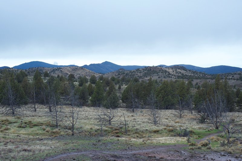 A view of the the surrounding hillsides from the end of the trail.