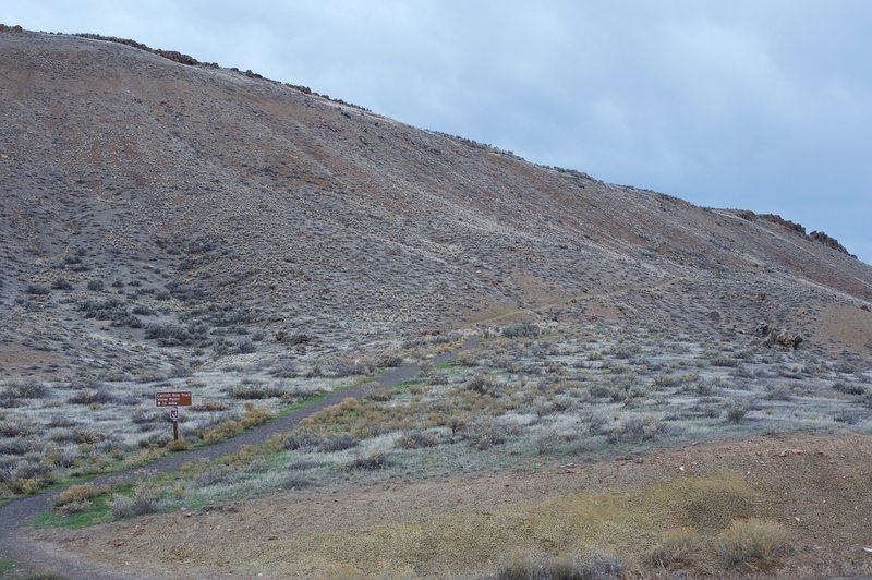 The trail as it departs the road and begins to climb the hillside.