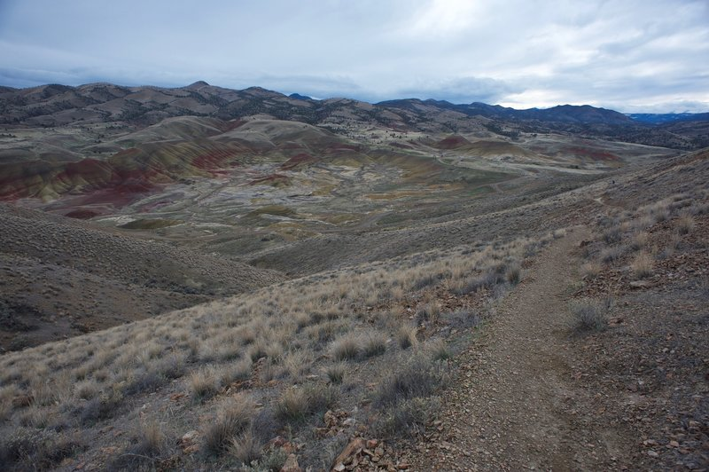 Looking back down the trail toward the Painted Hills Overlook.