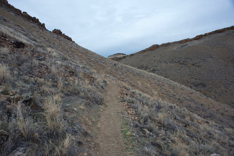 The trail as it climbs the hillside toward a notch in the hills.