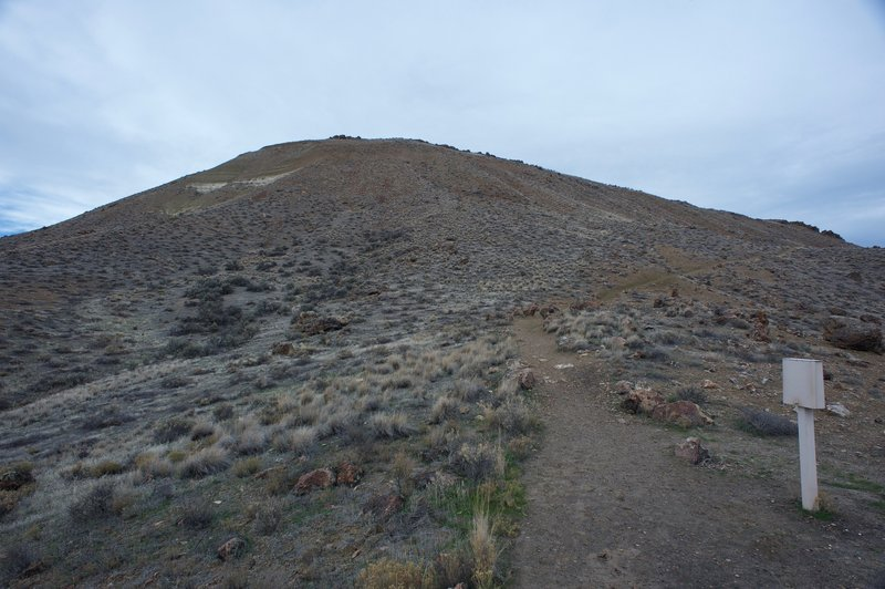 The trail climbs to the top of this hill.   You can also see the box that contains the trail ledger off to the right.