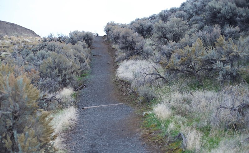 The trail is an easy hike or run along this gravel trail.